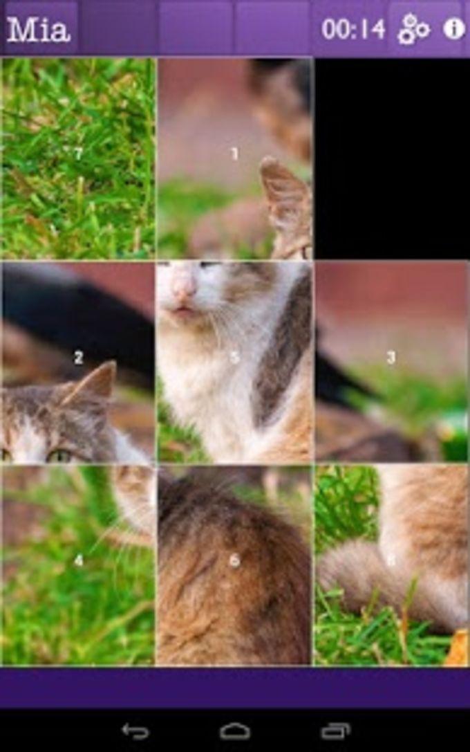 Rompecabeza de gatos y gatitos