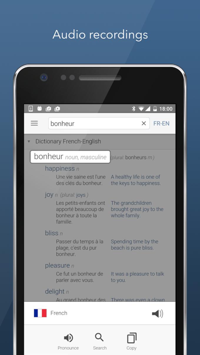 Dictionary Linguee