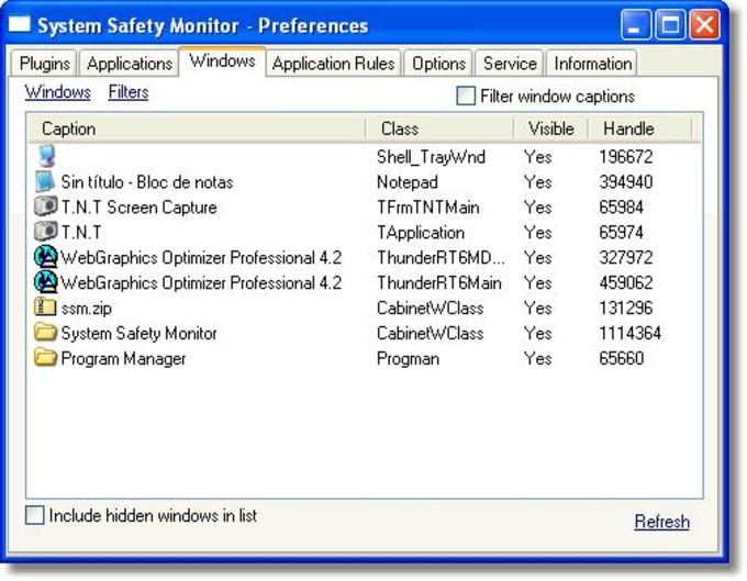 System Safety Monitor