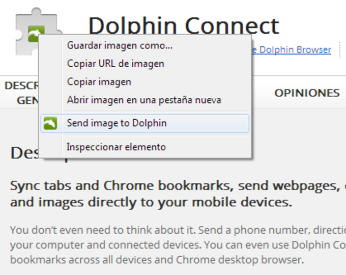 Dolphin Connect