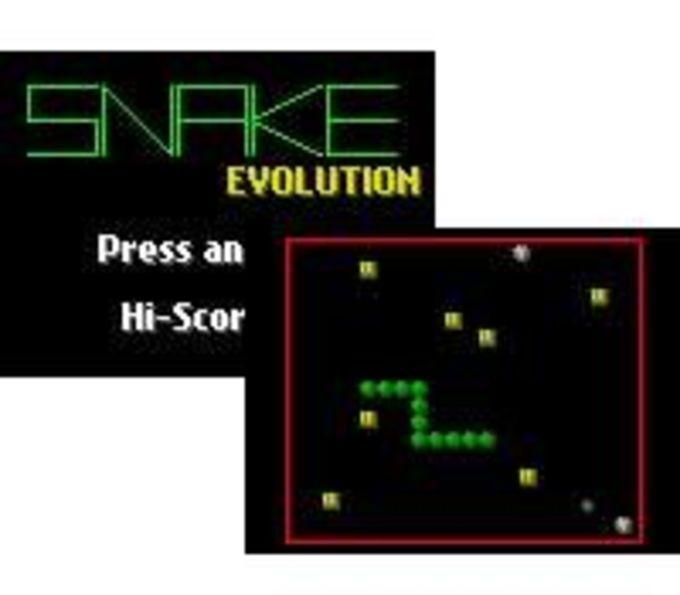 Snake Evolution
