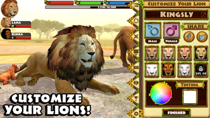 Ultimate Lion Simulator