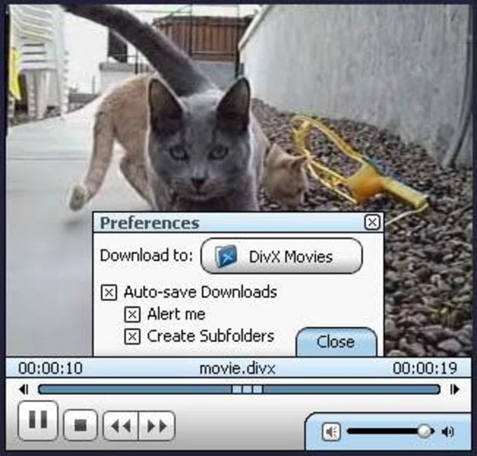 DivX Browser Plug-In Beta