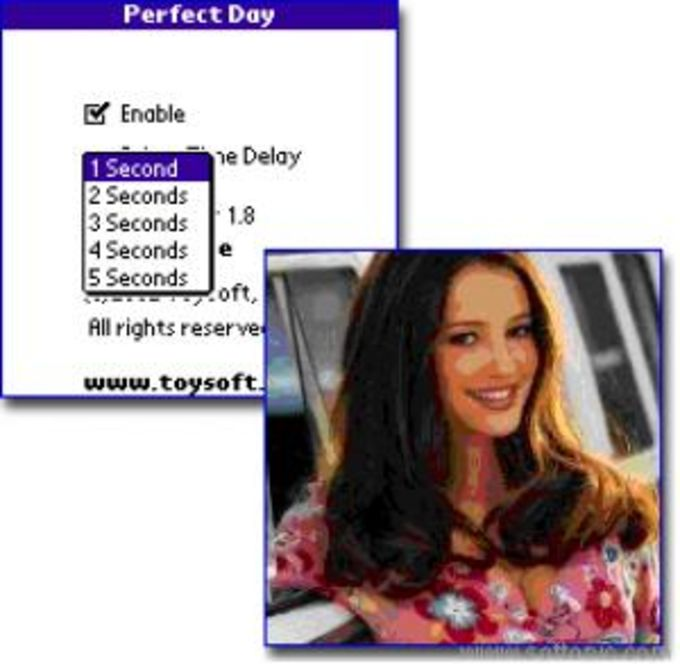 PerfecDay New