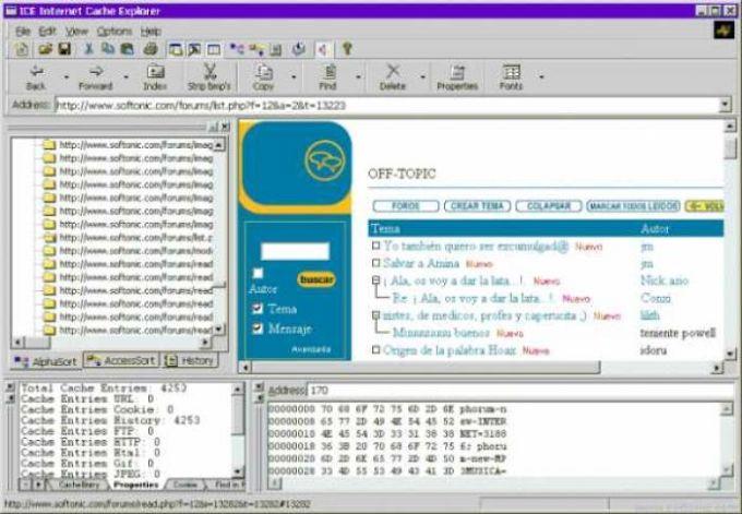 Internet Cache Explorer