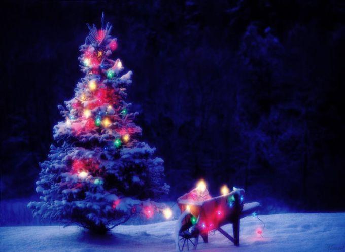 Tapeta Christmas Fairy-tale Wallpaper