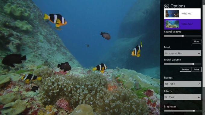 calm Aquarium