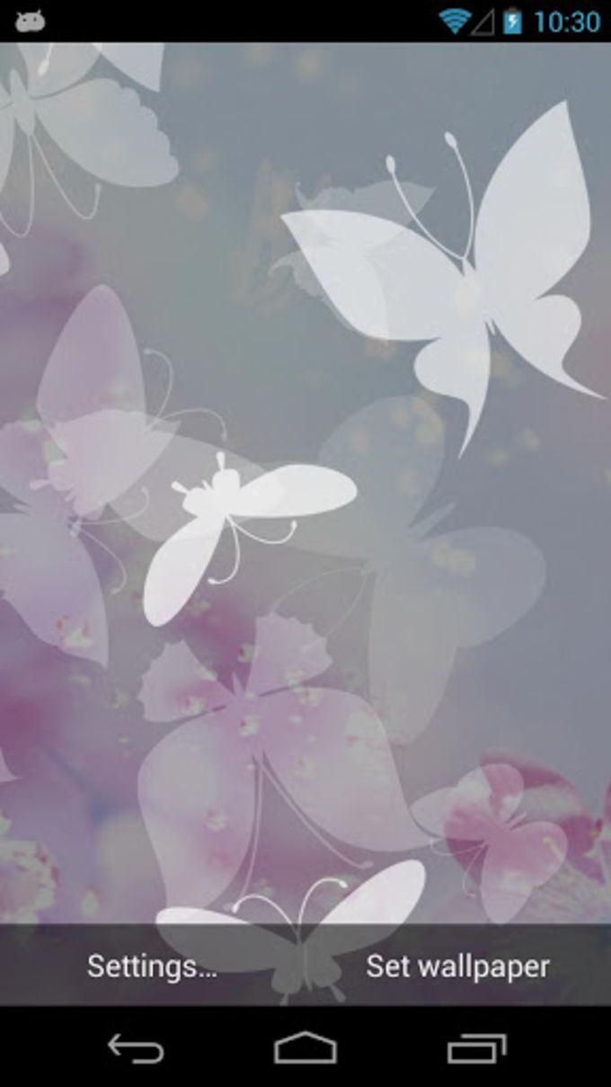 White Butterfly Live Wallpaper