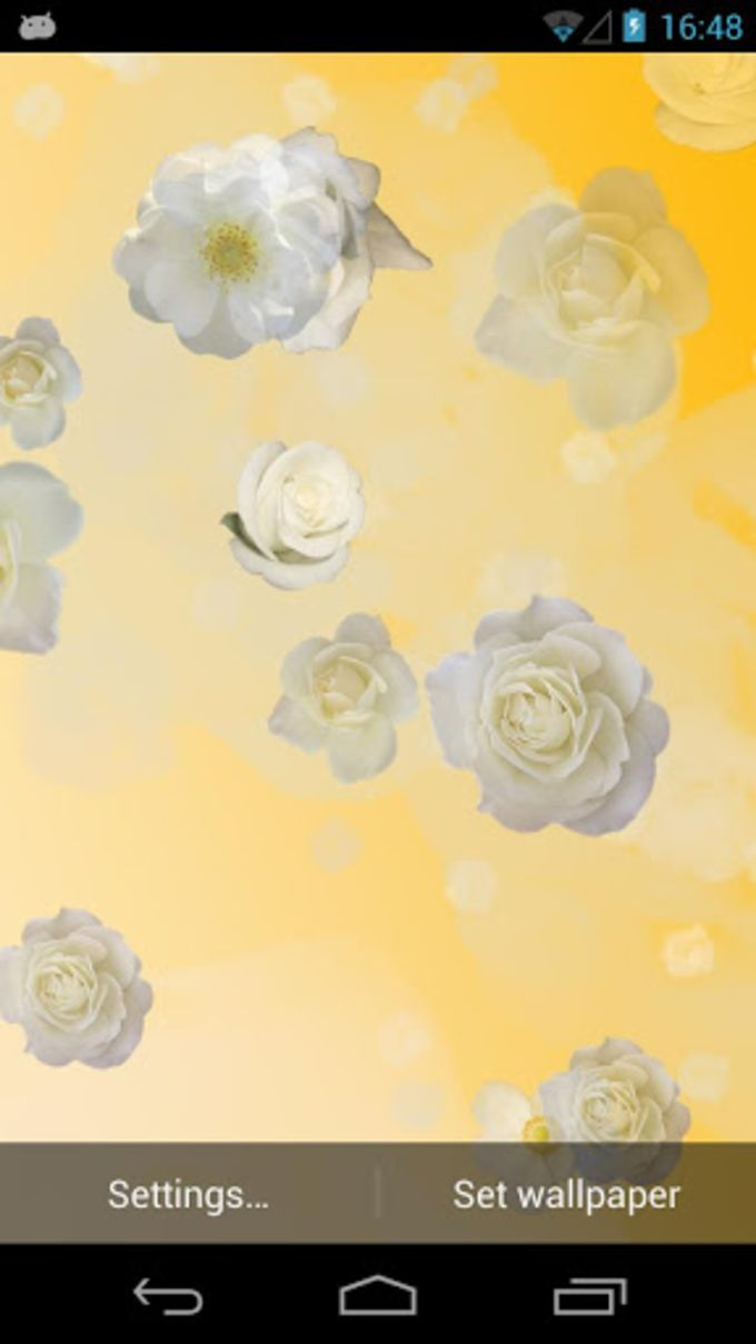 White Roses Live Wallpaper