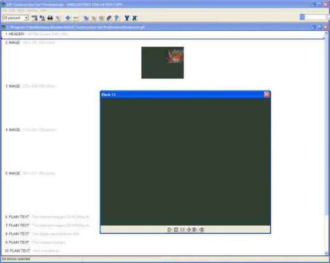 GIF Construction Set Pro