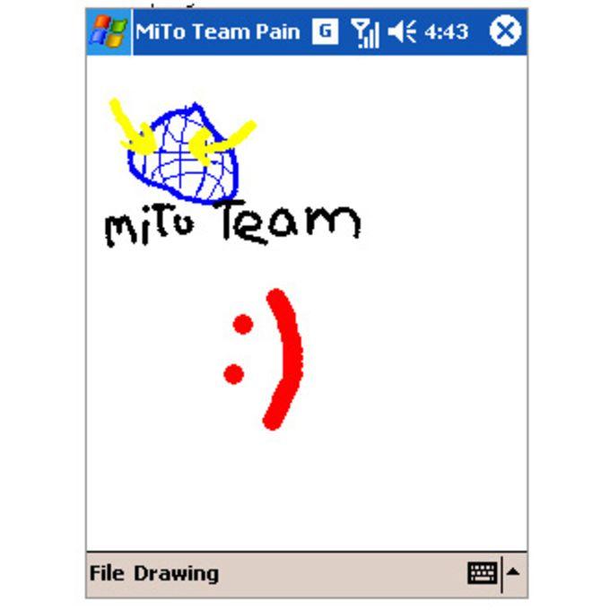 MiTo Team Paint