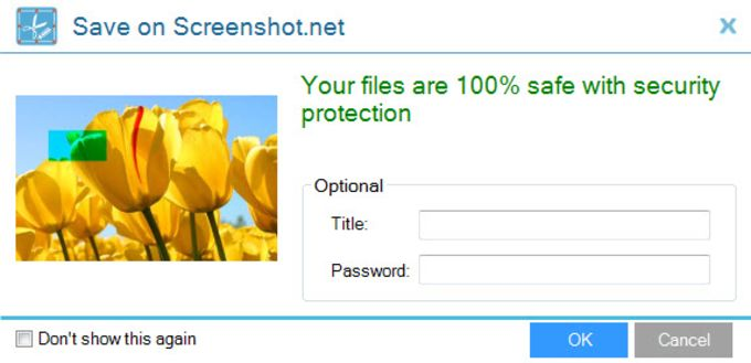 Apowersoft Free Screen Capture