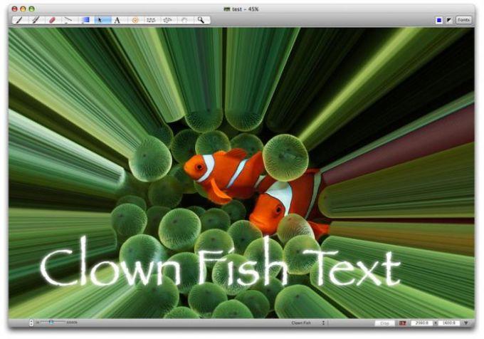 LiveQuartz Image Editor