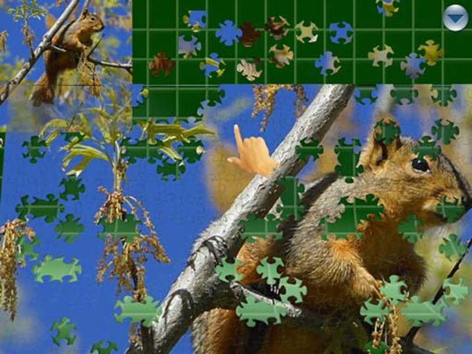 Puzzles Forever