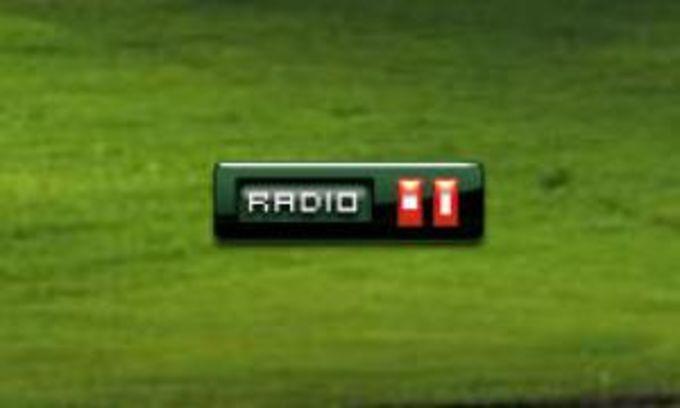 iRadio Widget