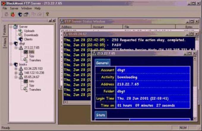 BlackMoon FTP Server