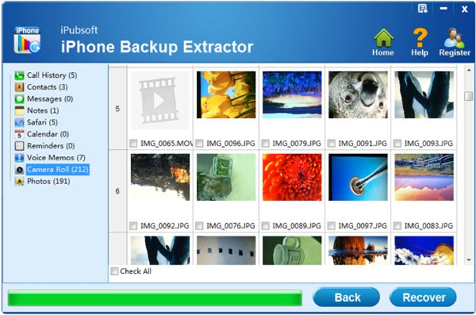 iPubsoft iPhone Backup Extractor
