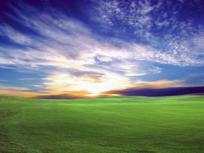 Sunset Bliss