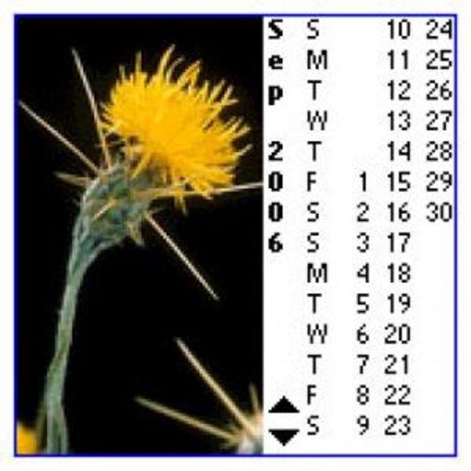 Pendragon Calendar Viewer