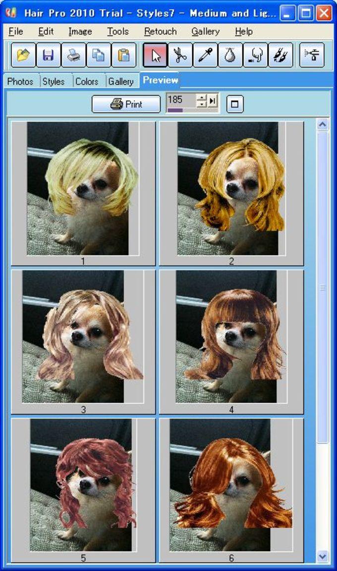 Hair Pro 2010