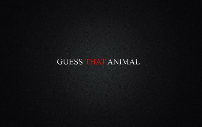 Guess That Animal