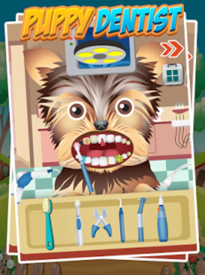 Dentista Puppy