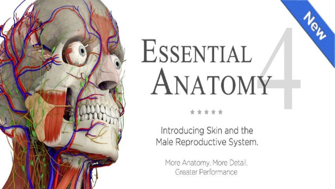 Essential Anatomy