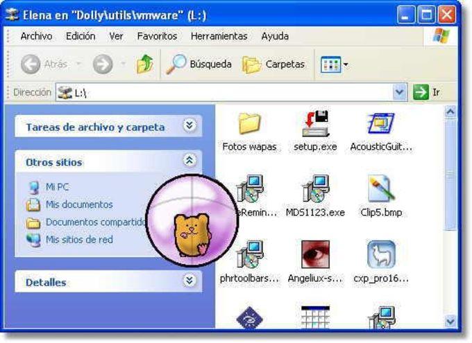 Hamster Ball Desktop Pet