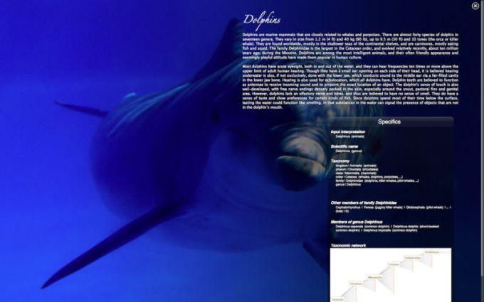 Real Aquarium HD