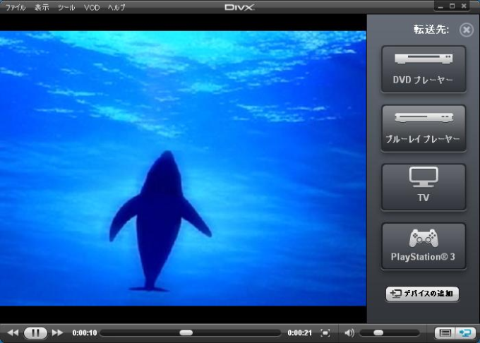 DivX Software for Windows
