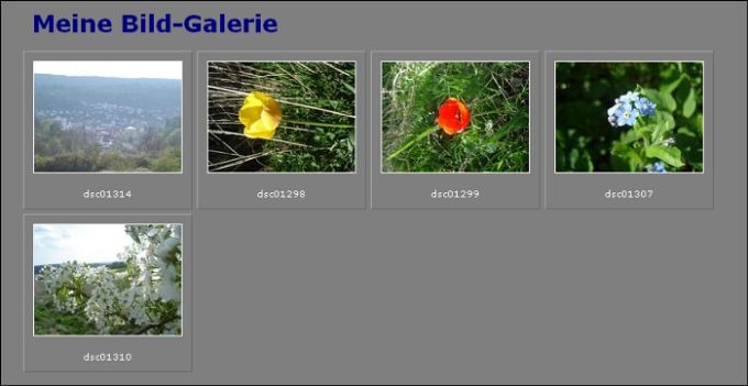 Image Gallery Maker