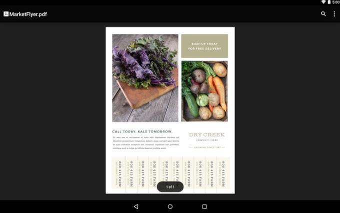 Visualizzatore PDF di Google
