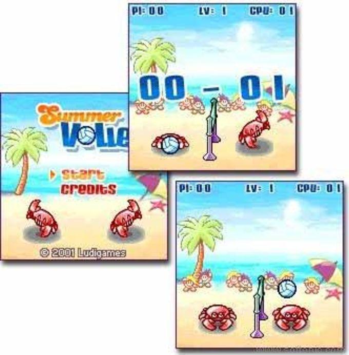 Summer Volley
