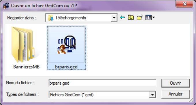 GedCom Vision