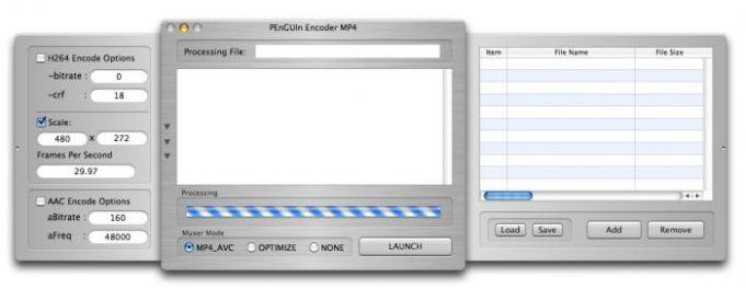 PEnGUIn Encoder MP4