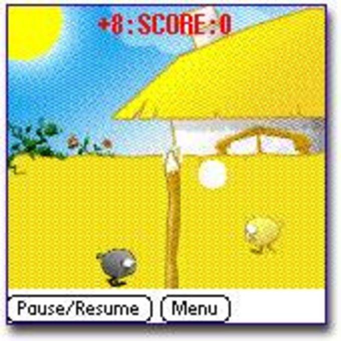 Chicken Volley