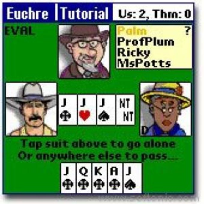 Championship Euchre Card Game