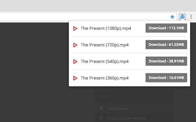 Video Downloader Professional for Chrome