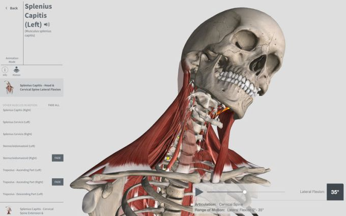 Complete Anatomy for Mac - Download