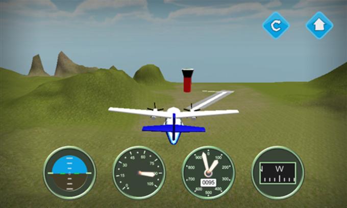 Flight Simulator N219