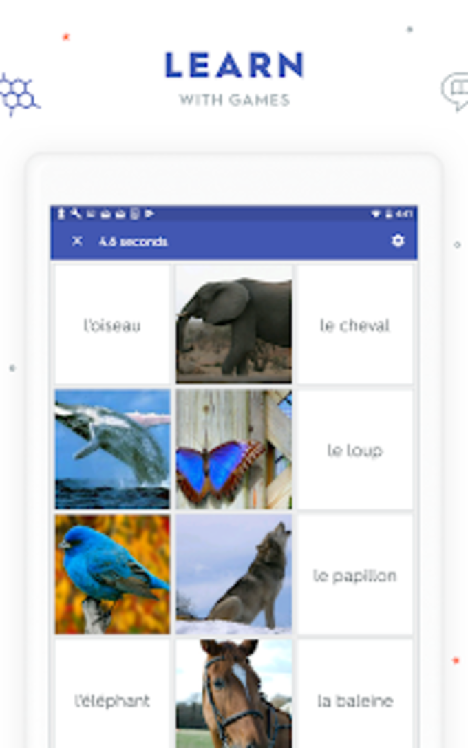 Quizlet: Learn Languages  Vocab with Flashcards