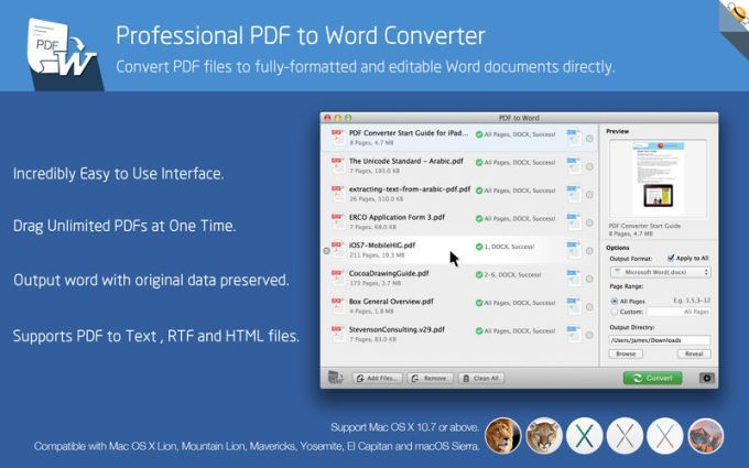 PDF to Word by Flyingbee