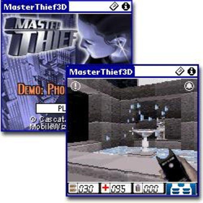 3D Master Thief