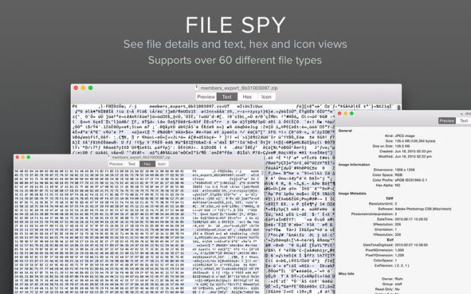 File Spy - View and Examine Files