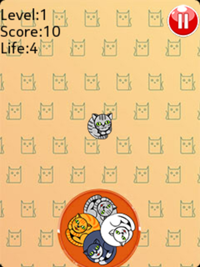 Rolling Cats - Color Match