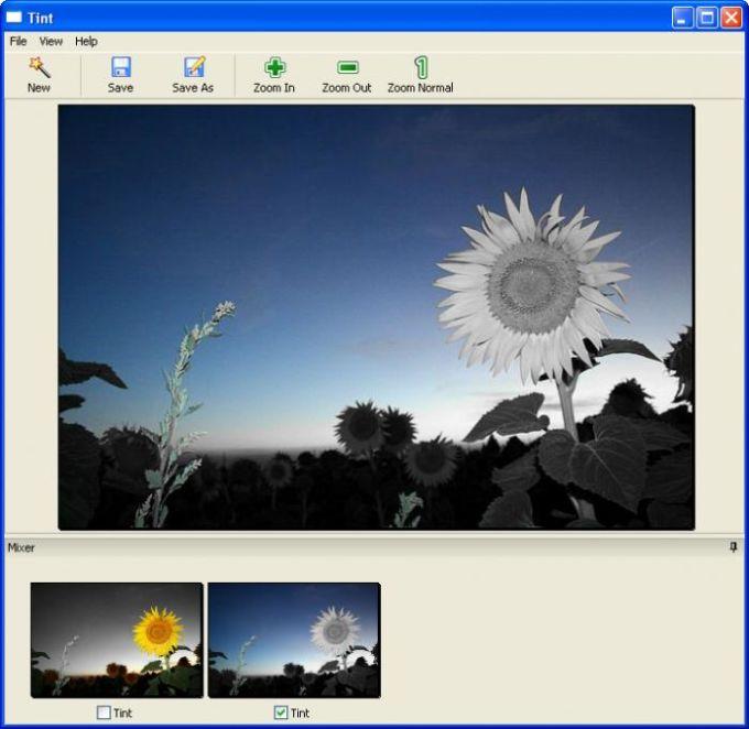 Tint Photo Editor