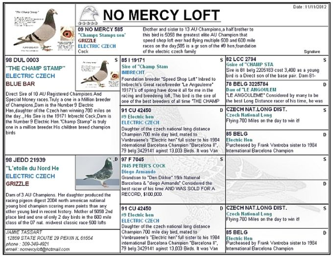 Pigeon Loft Organizer