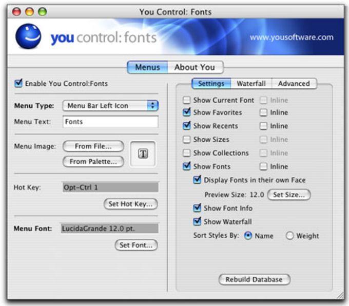 You Control:Fonts