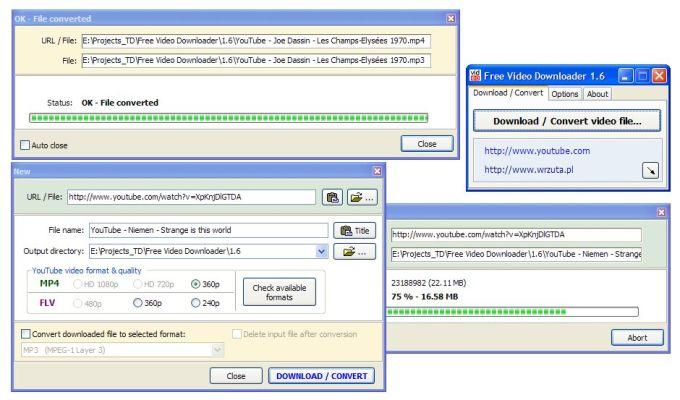 Pazera Free Video Downloader