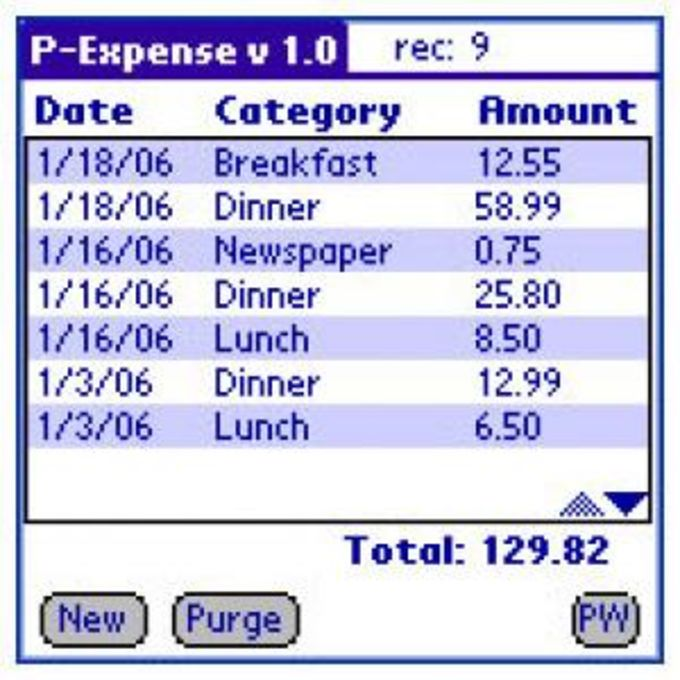 P-Expense